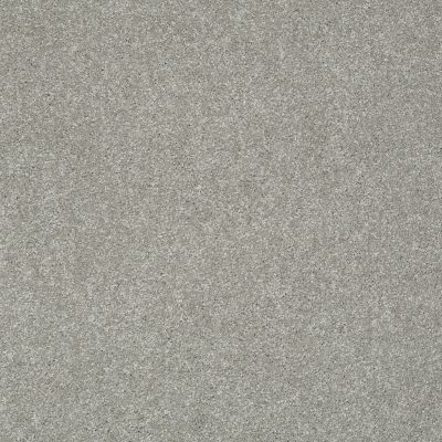 Shaw Floors Anso Colorwall Platinum Texture 12′ Elephant Gray 00534_EA572