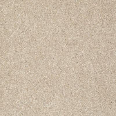 Shaw Floors Anso Colorwall Platinum Texture 12′ Natural Wood 00701_EA572