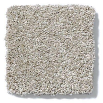 Shaw Floors Anso Colorwall Platinum Texture 12′ Warm Oatmeal 00722_EA572