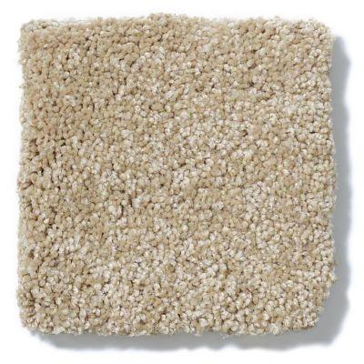 Shaw Floors Anso Colorwall Platinum Texture 12′ Desert Khaki 00742_EA572