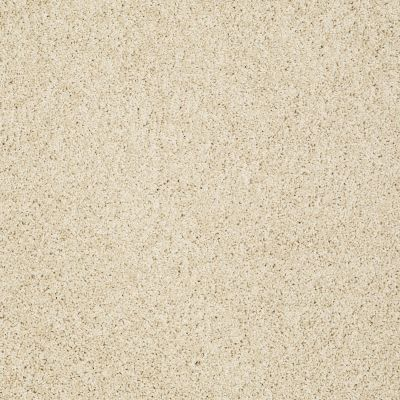 Shaw Floors Anso Colorwall Gold Twist Chenille Soft 00110_EA575
