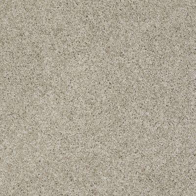 Shaw Floors Anso Colorwall Gold Twist Warm Oatmeal 00722_EA575