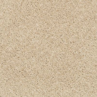 Shaw Floors Anso Colorwall Platinum Twist Chenille Soft 00110_EA576