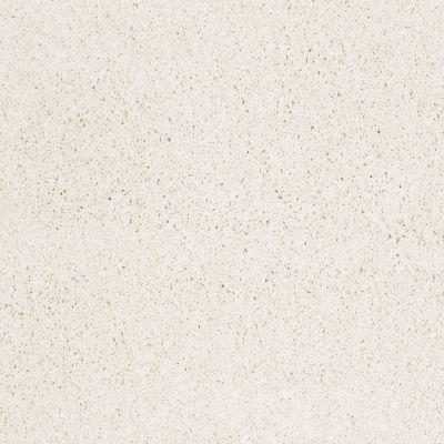 Shaw Floors Anso Colorwall Platinum Twist Snow Cap 00122_EA576