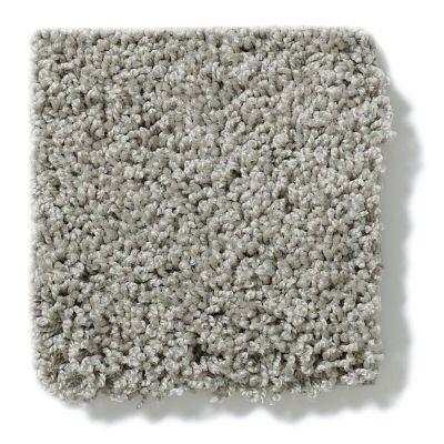 Shaw Floors Anso Colorwall Platinum Twist Grey Fog 00133_EA576