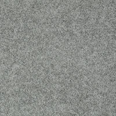 Shaw Floors Anso Colorwall Platinum Twist Bar Harbor 00531_EA576