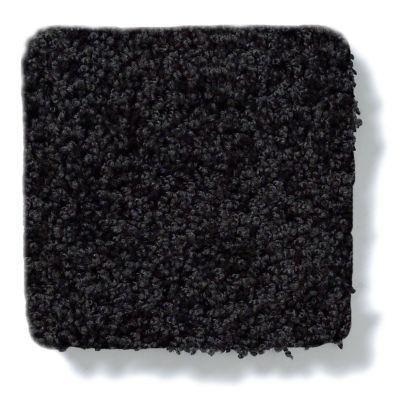 Shaw Floors Anso Colorwall Platinum Twist Black Tie Affair 00533_EA576