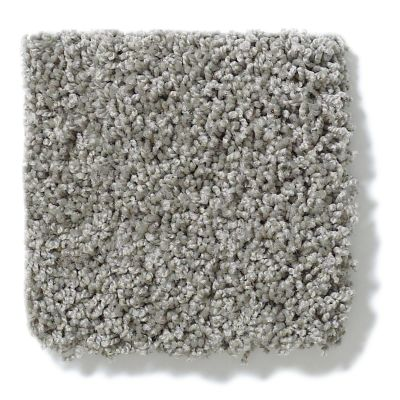 Shaw Floors Anso Colorwall Platinum Twist London 00535_EA576