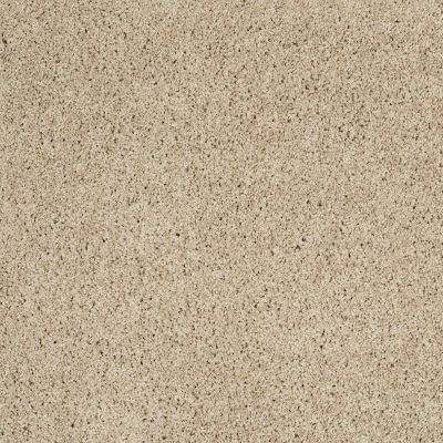 Shaw Floors Anso Colorwall Platinum Twist Travertine 00702_EA576