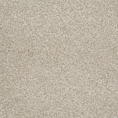 Shaw Floors Anso Colorwall Gold Texture Tonal Anchorage 00192_EA578