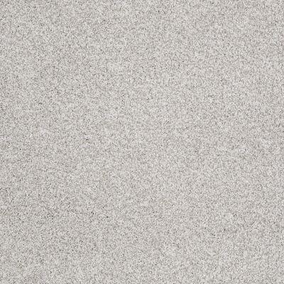Shaw Floors Anso Colorwall Platinum Texture Tonal Sequoia Park 00191_EA579