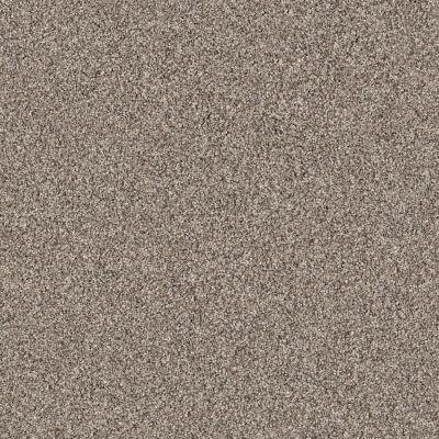 Shaw Floors Anso Colorwall Platinum Texture Tonal Park Avenue 00194_EA579