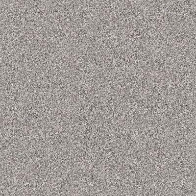 Shaw Floors Anso Colorwall Platinum Texture Tonal Shadow 00592_EA579