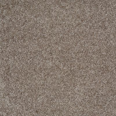 Shaw Floors SFA Dakota Springs Driftwood 00750_EA604