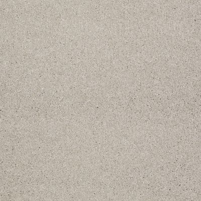Shaw Floors SFA Look Forward Soft Chamois 00103_EA605