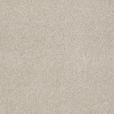 Shaw Floors SFA Look Forward Linen 00104_EA605