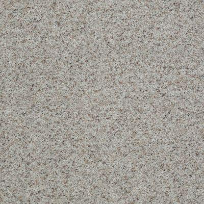 Shaw Floors SFA Look Forward Sandstone 00153_EA605