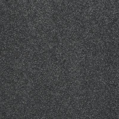 Shaw Floors SFA Look Forward Seacliff Heights 00300_EA605