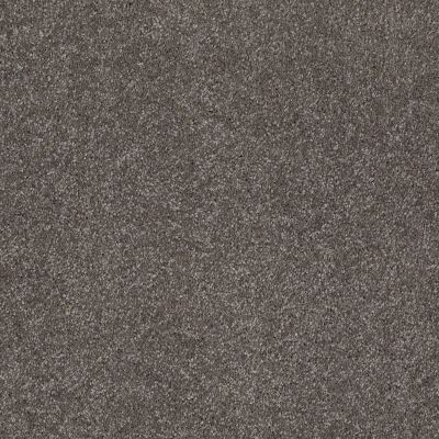 Shaw Floors SFA Look Forward Stone Hearth 00703_EA605
