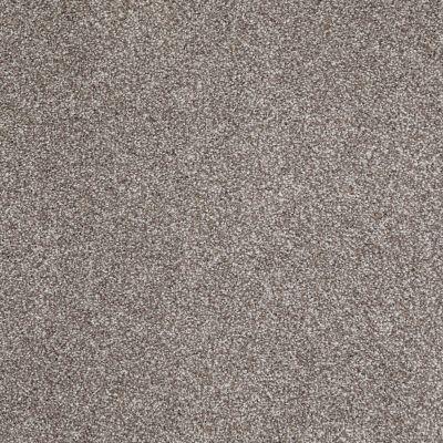 Shaw Floors SFA Look Forward Moccasin 00714_EA605