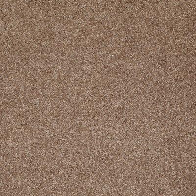 Shaw Floors SFA Sweet Life Acorn 00700_EA606
