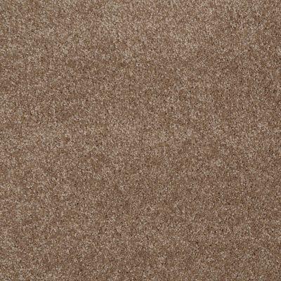 Shaw Floors SFA Majority Rules Acorn 00700_EA607