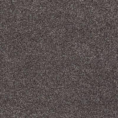 Shaw Floors SFA Majority Rules Rich Earth 00715_EA607