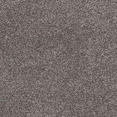 Shaw Floors SFA Majority Rules Bear Mountain 00716_EA607