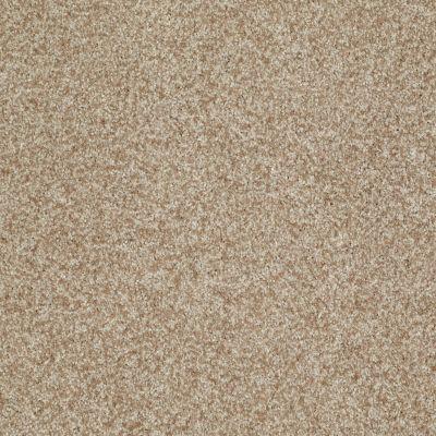 Shaw Floors SFA Pun Intended Bamboo 00103_EA656