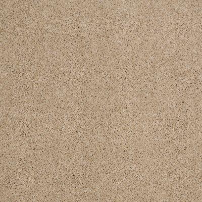 Shaw Floors SFA Source II Dunes 00102_EA682