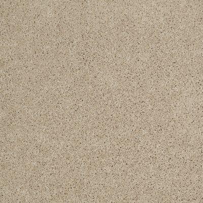 Shaw Floors SFA Source II Frost 00104_EA682