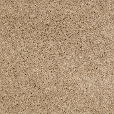 Shaw Floors SFA Source II Almond Tone 00163_EA682