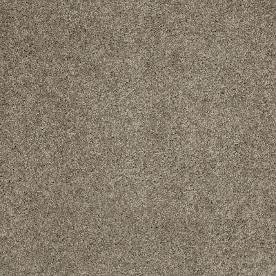 Shaw Floors SFA Source II Elephant 00565_EA682