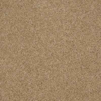 Shaw Floors SFA Source II Natural Wood 00701_EA682