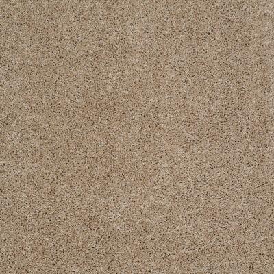 Shaw Floors SFA Source II Mushroom 00703_EA682