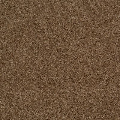 Shaw Floors SFA Source II Travertine 00711_EA682