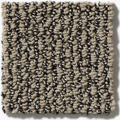 Shaw Floors Simply The Best Vibrant Mocha E9345_00700