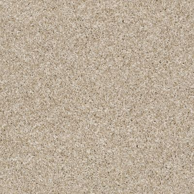 Shaw Floors Simply The Best Breathe & Reflect Biscotti 00100_EA688