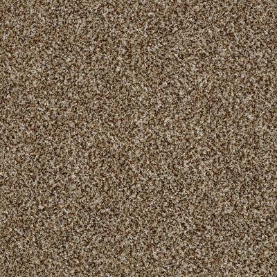 Shaw Floors Simply The Best Breathe & Reflect Honey Bear 00200_EA688