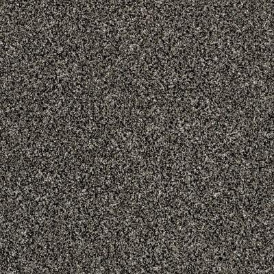Shaw Floors Simply The Best Breathe & Reflect Meteorite 00501_EA688