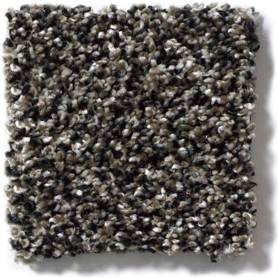 Shaw Floors Simply The Best Work the Color Black Granite E9346_00503