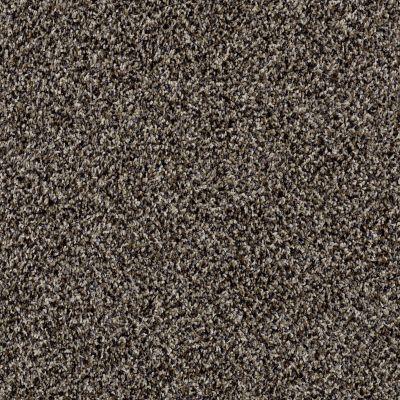 Shaw Floors SFA Composure Oxford 00700_EA689