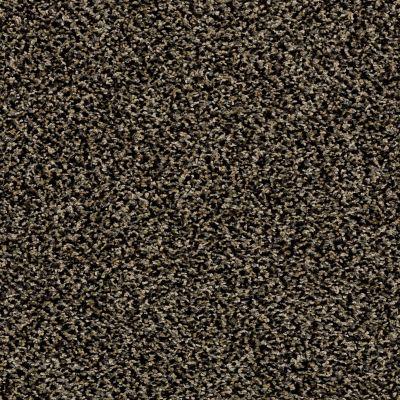Shaw Floors SFA Composure Porcupine 00702_EA689