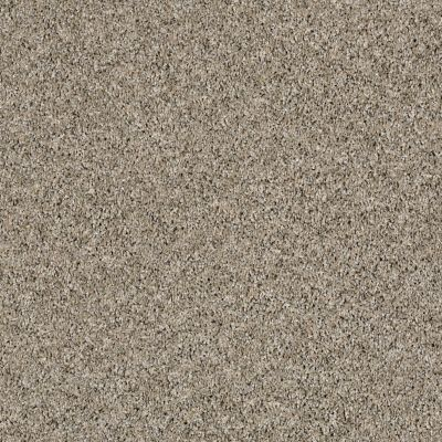 Shaw Floors Simply The Best Nature Essence Echo 00101_EA692