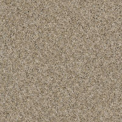 Shaw Floors Simply The Best Nature Essence Moonlit Sand 00103_EA692