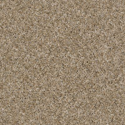 Shaw Floors Simply The Best Nature Essence Cork 00201_EA692