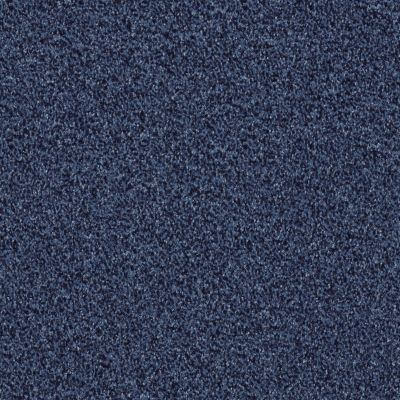 Shaw Floors SFA Infallible Indigo Mood 00421_EA693