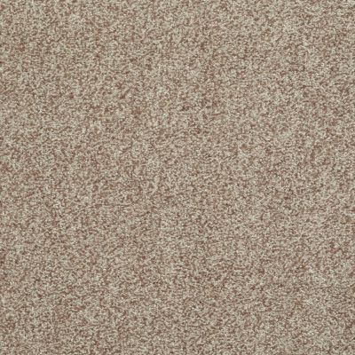Shaw Floors Simply The Best Infallible Camel 00700_EA693