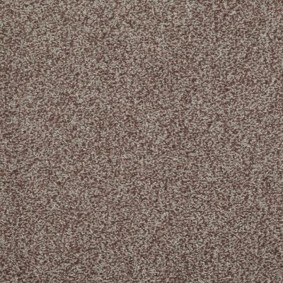 Shaw Floors SFA Infallible Pecan 00701_EA693