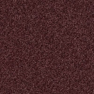 Shaw Floors SFA Infallible Deep Wine 00920_EA693